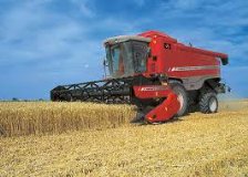 Farm combine in wheat field